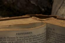 Le Vieux Livre Des Proverbes