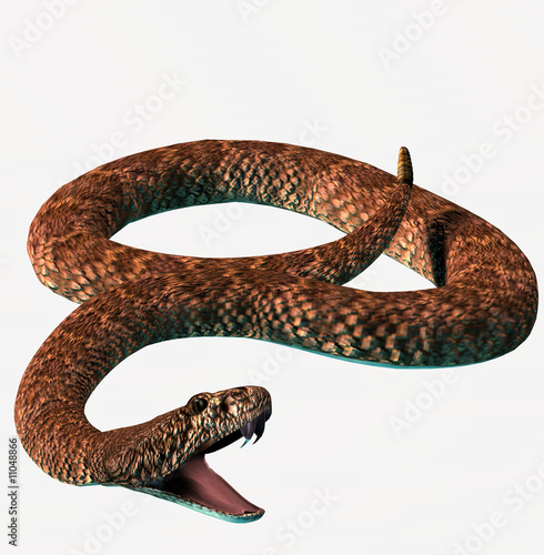 Photo serpente 3d