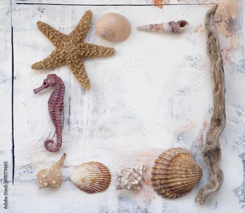 Foto-Stoff bedruckt - Rahmen aus Strandgut (von Sunnydays)