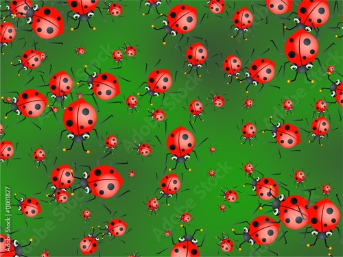 La pose en embrasure Coccinelles ladybug wallpaper