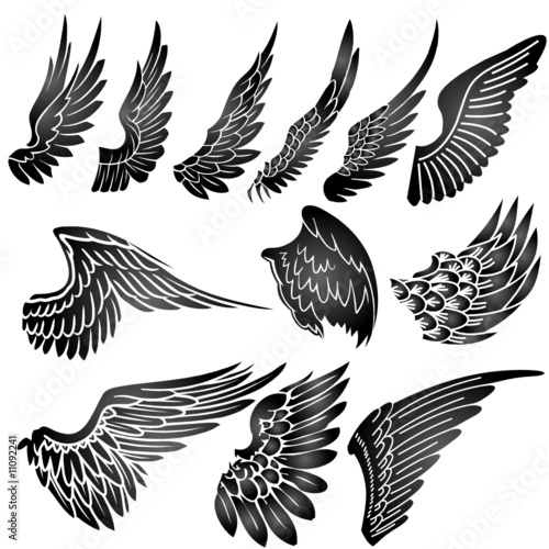 Fototapeta wings silhouette vector obraz