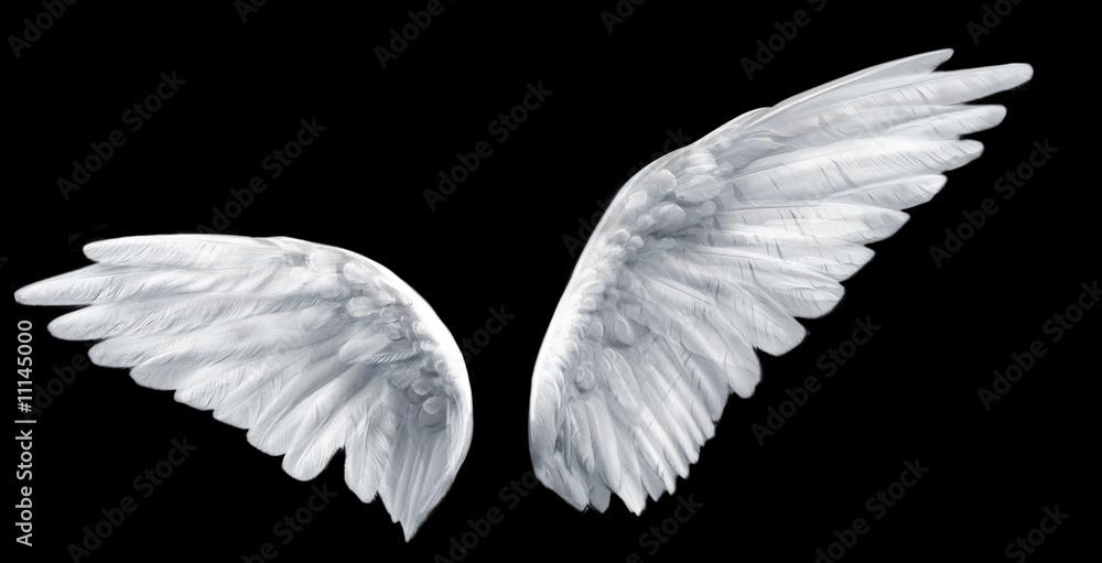 Fototapeta angel wings
