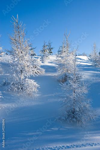 Winter landscape #11218696
