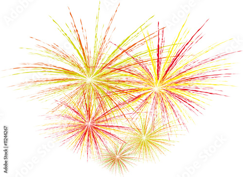 feu d'artifice3 Canvas Print