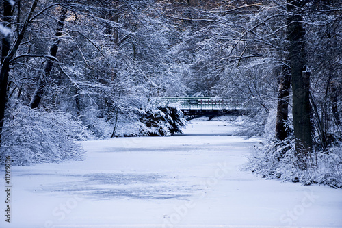 Fotografie, Obraz  Brücke im Stadtpark