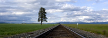 Panorama Of Train Tracks Through A Farm Field.