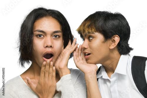 Two Asian teenagers gossiping Wallpaper Mural