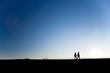 canvas print picture - blue sky walk