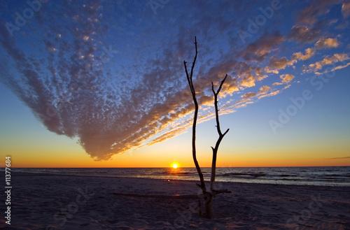 Sunshine at Baltic Sea Canvas Print