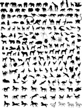Big Collection Of Different Animals  Silhouettes