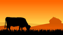 Cow On Pasture At Sunset In Su...