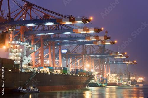 Fotografia In the harbour
