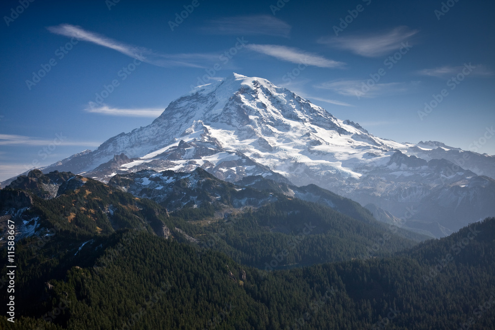 Fototapety, obrazy: View of Mt Rainier