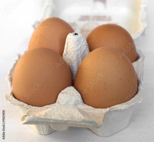 Wall Murals Horses Eggs