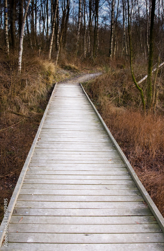 Poster Retro wooden forest bridge