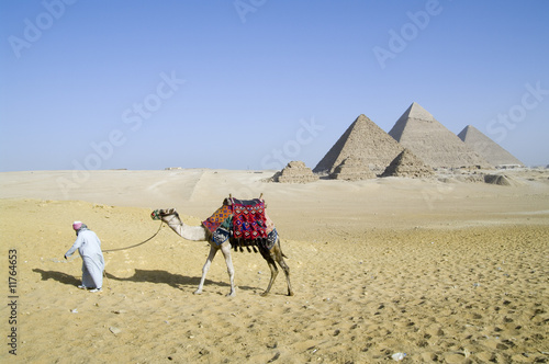 Fotografering  Egyption desert walk