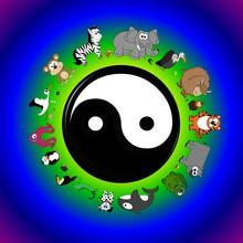 Yin Yang Peaceful Unity Animal Poster