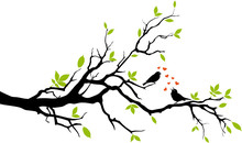 Spring, Two Birds In Love, Sitting On A Branch