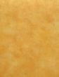 Leinwandbild Motiv orange paint texture background