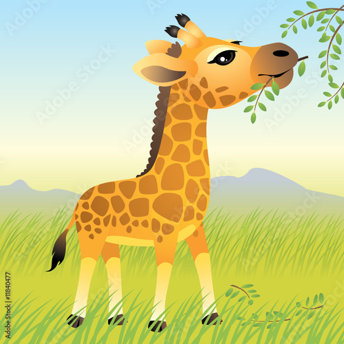 Deurstickers Zoo Baby Animal collection: Giraffe. More animals in my gallery.