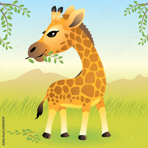 Foto op Aluminium Zoo Baby Animal collection: Giraffe