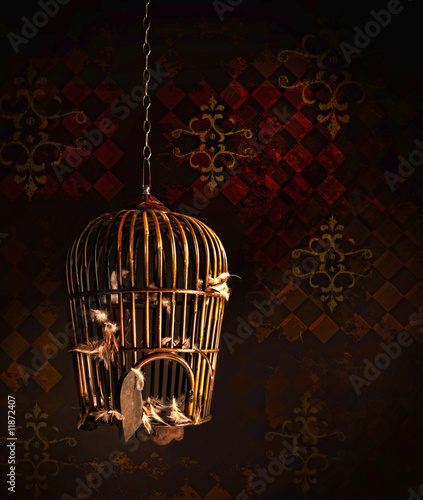 Fotografie, Obraz  Old wooden bird cage with feathers