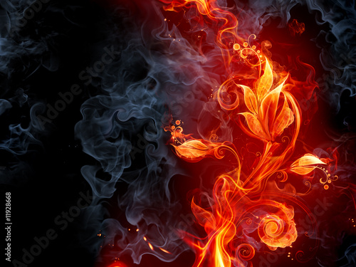 Stickers pour porte Flamme Fiery flower
