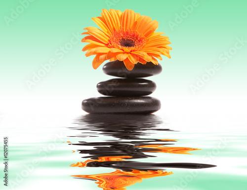 Foto-Teppich - wellness (von gandolf)