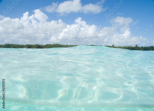 Poster Turquoise Floating in the Caribbean sea