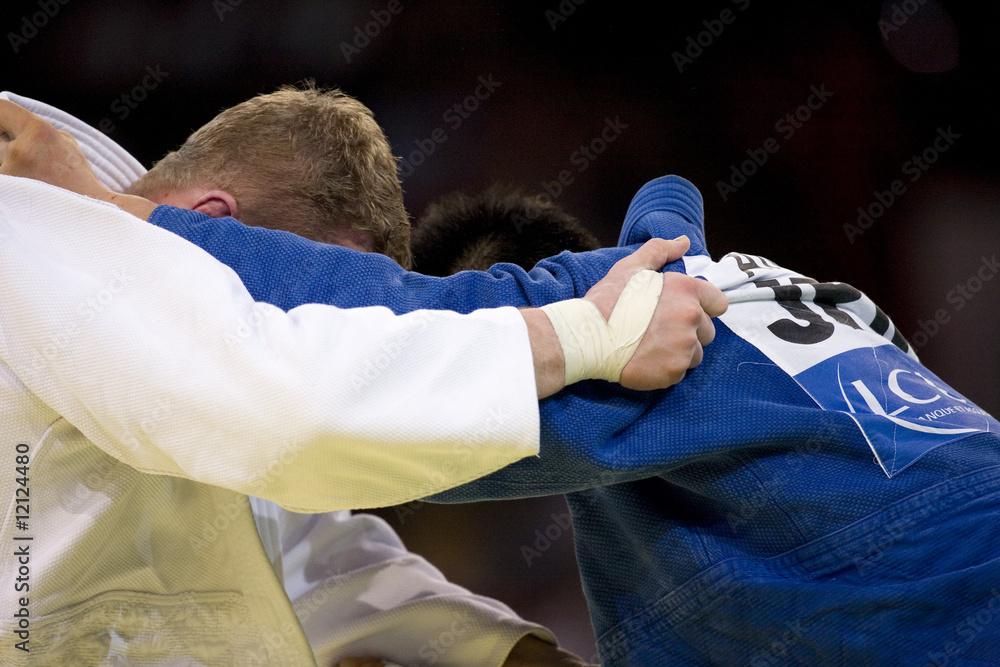 Judo Fotografie Tablou Europostersro
