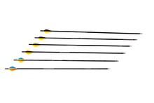 Field Point Arrows