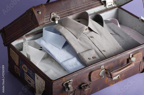 Canvas-taulu valise
