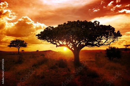 Foto auf Leinwand Afrika Africa Sunset