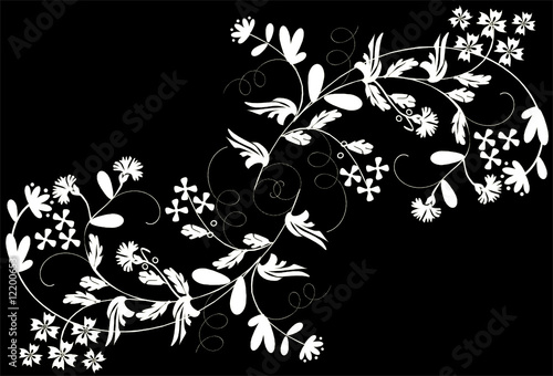 Staande foto Bloemen zwart wit two white floral branches
