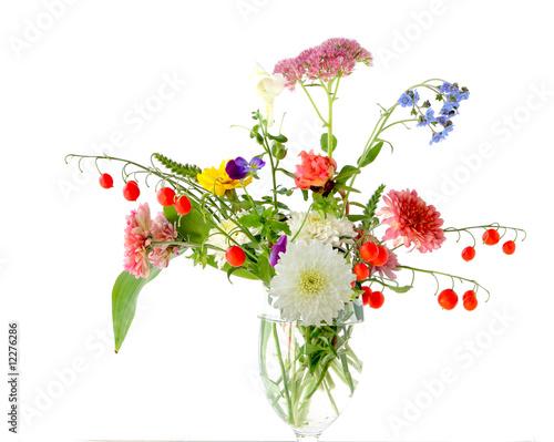 Fototapety, obrazy: Autumn flowers