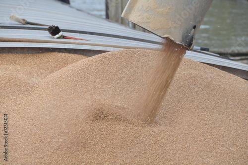 Valokuva  chargement de blé d'une péniche