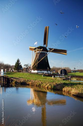 Fotobehang Molens Beautiful dutch windmill