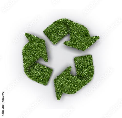 Reciclado de hojas Wallpaper Mural