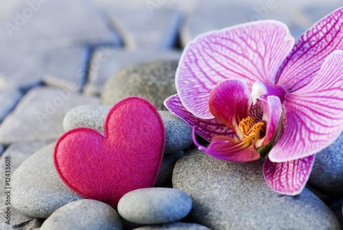 Canvas Prints Orchid Orchidee und Herz auf Kieseln