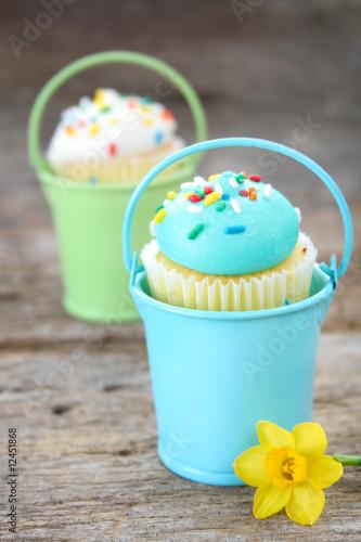 Spring Cupcakes Canvas Print
