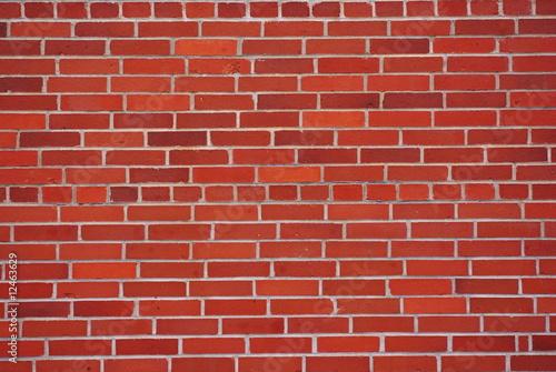 Fototapeta premium wall