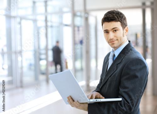 Fotografie, Obraz  Businessman using laptop