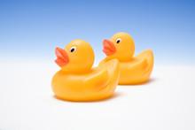 Rubber Ducks On A Blue Studio Background.