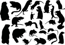 Twanty One Rodent Silhouettes