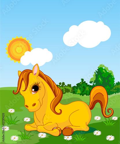 Poster Pony Golden horse