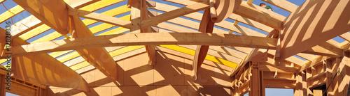 Obraz na plátně Stitched Panorama de grande charpente