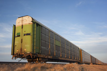 Train Of Old Stock Rail Cars F...