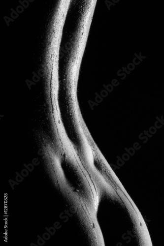 Valokuva  Frauenakt 66