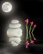Full Moon Over Zen Garden