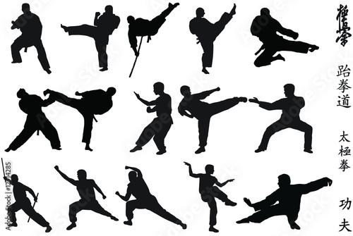 Fotografie, Obraz  Karate fighters
